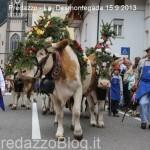 predazzo desmontegada mucche 2013 predazzoblog by Lorenzo Delugan22 150x150 Predazzo, la fotogallery della Desmontegada 2013