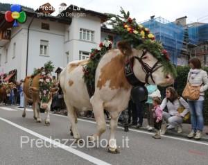 predazzo desmontegada mucche 2013 predazzoblog by Lorenzo Delugan31 300x238 predazzo desmontegada mucche 2013 predazzoblog by Lorenzo Delugan31