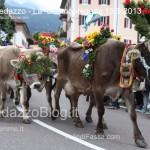 predazzo desmontegada mucche 2013 predazzoblog116 150x150 Predazzo, la fotogallery della Desmontegada 2013