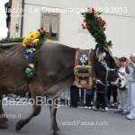 predazzo desmontegada mucche 2013 predazzoblog117 150x150 Predazzo, la fotogallery della Desmontegada 2013