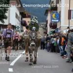 predazzo desmontegada mucche 2013 predazzoblog120 150x150 Predazzo, la fotogallery della Desmontegada 2013