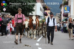 predazzo desmontegada mucche 2013 predazzoblog123 300x199 predazzo desmontegada mucche 2013 predazzoblog123
