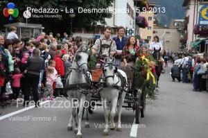 predazzo desmontegada mucche 2013 predazzoblog134 300x199 predazzo desmontegada mucche 2013 predazzoblog134