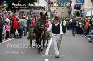 predazzo desmontegada mucche 2013 predazzoblog163 300x199 predazzo desmontegada mucche 2013 predazzoblog163