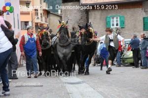predazzo desmontegada mucche 2013 predazzoblog186 300x199 predazzo desmontegada mucche 2013 predazzoblog186