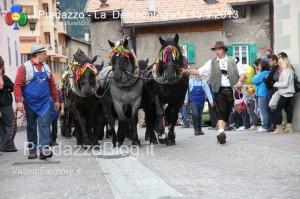 predazzo desmontegada mucche 2013 predazzoblog187 300x199 predazzo desmontegada mucche 2013 predazzoblog187