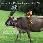 predazzo desmontegada mucche 2013 predazzoblog205 150x150 Predazzo, la fotogallery della Desmontegada 2013