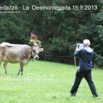 predazzo desmontegada mucche 2013 predazzoblog213 150x150 Predazzo, la fotogallery della Desmontegada 2013