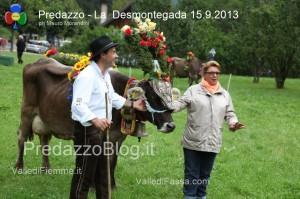 predazzo desmontegada mucche 2013 predazzoblog224 300x199 predazzo desmontegada mucche 2013 predazzoblog224