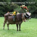 predazzo desmontegada mucche 2013 predazzoblog230 150x150 Predazzo, la fotogallery della Desmontegada 2013