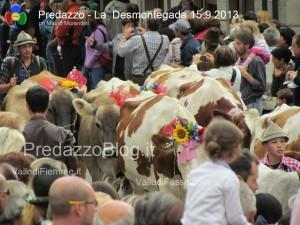 predazzo desmontegada mucche 2013 predazzoblog263 300x225 predazzo desmontegada mucche 2013 predazzoblog263