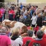 predazzo desmontegada mucche 2013 predazzoblog265 150x150 Predazzo, la fotogallery della Desmontegada 2013