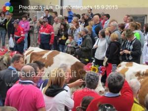 predazzo desmontegada mucche 2013 predazzoblog265 300x225 predazzo desmontegada mucche 2013 predazzoblog265