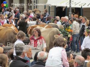 predazzo desmontegada mucche 2013 predazzoblog272 300x225 predazzo desmontegada mucche 2013 predazzoblog272