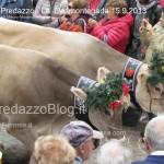 predazzo desmontegada mucche 2013 predazzoblog277 150x150 Predazzo, la fotogallery della Desmontegada 2013