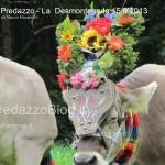 predazzo desmontegada mucche 2013 predazzoblog322 150x150 Predazzo, la fotogallery della Desmontegada 2013