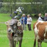 predazzo desmontegada mucche 2013 predazzoblog323 150x150 Predazzo, la fotogallery della Desmontegada 2013
