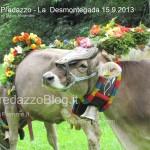 predazzo desmontegada mucche 2013 predazzoblog324 150x150 Predazzo, la fotogallery della Desmontegada 2013
