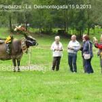 predazzo desmontegada mucche 2013 predazzoblog326 150x150 Predazzo, la fotogallery della Desmontegada 2013