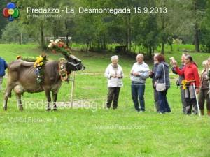 predazzo desmontegada mucche 2013 predazzoblog326 300x225 predazzo desmontegada mucche 2013 predazzoblog326
