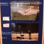 predazzo desmontegada mucche 2013 predazzoblog37 150x150 Predazzo, la fotogallery della Desmontegada 2013
