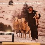 predazzo desmontegada mucche 2013 predazzoblog43 150x150 Predazzo, la fotogallery della Desmontegada 2013