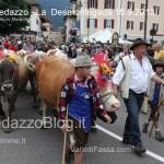 predazzo desmontegada mucche 2013 predazzoblog72 150x150 Predazzo, la fotogallery della Desmontegada 2013
