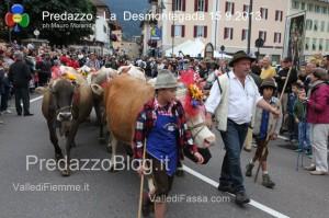 predazzo desmontegada mucche 2013 predazzoblog72 300x199 predazzo desmontegada mucche 2013 predazzoblog72