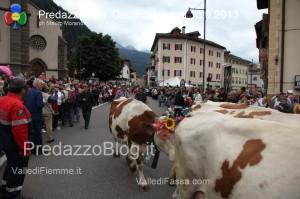 predazzo desmontegada mucche 2013 predazzoblog73 300x199 predazzo desmontegada mucche 2013 predazzoblog73