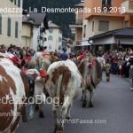 predazzo desmontegada mucche 2013 predazzoblog74 150x150 Predazzo, la fotogallery della Desmontegada 2013