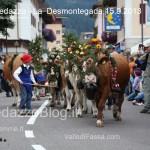 predazzo desmontegada mucche 2013 predazzoblog97 150x150 Predazzo, la fotogallery della Desmontegada 2013