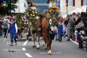 predazzo desmontegada mucche 2013 predazzoblog98 300x199 predazzo desmontegada mucche 2013 predazzoblog98