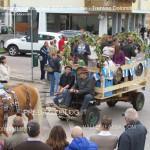 predazzo oktoberfest 2013 sfilata 20.10.2013 ph mauro morandini predazzoblog262 150x150 Oktoberfest Predazzo 2013   Le Foto di un evento spettacolare