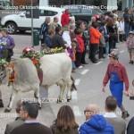 predazzo oktoberfest 2013 sfilata 20.10.2013 ph mauro morandini predazzoblog277 150x150 Oktoberfest Predazzo 2013   Le Foto di un evento spettacolare