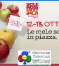 sclerosi multipla mele in piazza 2013 predazzo