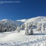 nevicate rolle valles san pellegrino dolomiti danni e paesaggi71 150x150 Tsunami di neve nelle valli di Fiemme e Fassa. Foto e Video