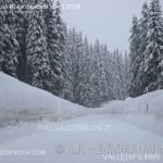 passo rolle e passo san pellegrino nevicate al 4.2.2014 predazzo blog2 150x150 Tsunami di neve nelle valli di Fiemme e Fassa. Foto e Video