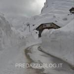 passo rolle e venegia neve 2014 by fabio dellagiacoma6 150x150 Tsunami di neve nelle valli di Fiemme e Fassa. Foto e Video