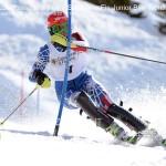 Predazzo Passo Rolle gare Sci Alpino Fis Junior Bim Trentino us dolomitica ph elvis241 150x150 Predazzo Passo Rolle gare Sci Alpino Fis Junior Bim Trentino   Foto