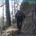 predazzo cercando il boscaiolo delle pepite doro 150x150 LOro di Predazzo, svelato il luogo della scoperta   Video