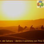 100 km del sahara con pino dellasega 150x150 Sky Icarus   video dedicato alla 100km del Sahara con Pino Dellasega