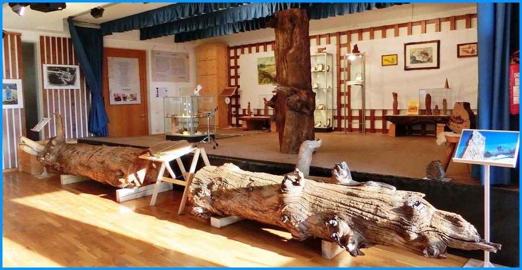 albero millenario monte san pietro 1 Albero millenario di Pietralba in mostra
