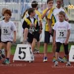 festa dellatletica 2014 predazzo us dolomitica9 150x150 Predazzo, le foto della Festa dell'Atletica 2014