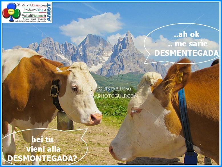 desmontegada 2014 predazzo Predazzo, le novità della Desmontegada 2014