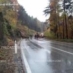 diluvia in fiemme e fassa 6.11.2014 travignolo avisio frane7 150x150 Diluvia in Fiemme e Fassa le Foto e i Video