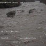 maltempo in fiemme e fassa 6.11.2014 travignolo avisio3 150x150 Diluvia in Fiemme e Fassa le Foto e i Video