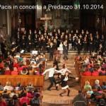 via pacis concerto a predazzo 31.10.2014 chiesa parrocchiale8 150x150 Predazzo, avvisi della Parrocchia 2/9 nov. Foto concerto Via Pacis