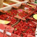 mercato contadino predazzo fiemme14 150x150 Inaugurato stamattina il Mercato Contadino di Predazzo