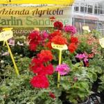 mercato contadino predazzo fiemme8 150x150 Inaugurato stamattina il Mercato Contadino di Predazzo