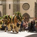 predazzo desmontegada 2015 4 ottobre predazzoblog112 150x150 Desmontegada 2015 di Predazzo   Le Foto